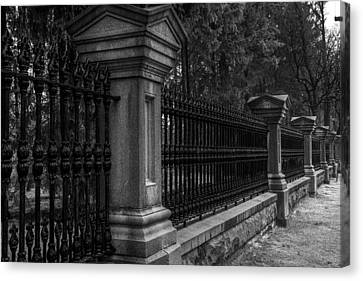 Fancy Fence Canvas Print by Celso Bressan