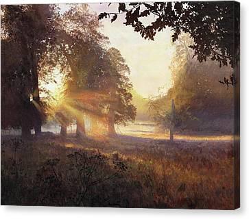 Fangorn Canvas Print by Helen Parsley