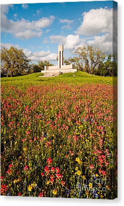 Fannin Monument And Memorial With Wildflowers In Goliad - Coastal Bend South Texas Canvas Print