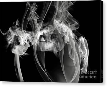 Fantasies In Smoke Iv Canvas Print by Clayton Bruster