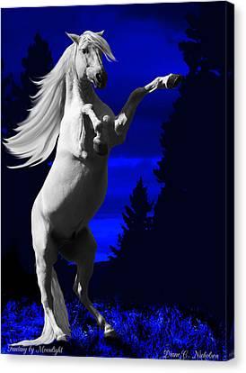 Fantasy By Moonlight Canvas Print by Diane C Nicholson