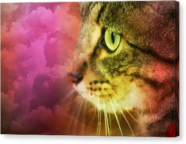 Fantasy Cat One Canvas Print
