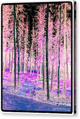 Fantasy Forest Canvas Print by Linda Bianic