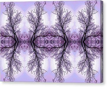 Fantasy In Purple Canvas Print by James Steele