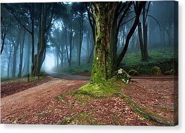 Canvas Print featuring the photograph Fantasy by Jorge Maia