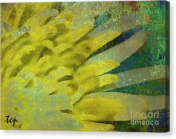 Canvas Print featuring the photograph Fantasy by Traci Cottingham