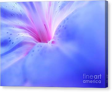 Fantasy Within Canvas Print