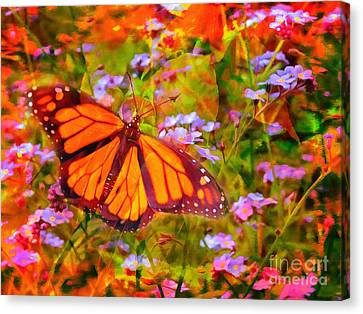Farfalla 2015 Canvas Print