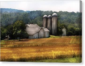 Farm - Barn - Home On The Range Canvas Print by Mike Savad