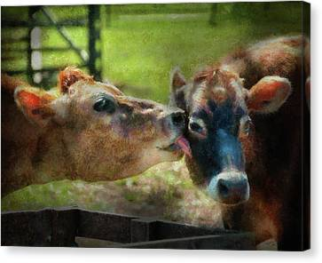 Farm - Cow - Let Mommy Clean That Canvas Print by Mike Savad