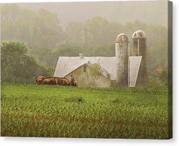 Farm - Farmer - Amish Farming Canvas Print by Mike Savad
