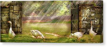 Mother Goose Canvas Print - Farm - Geese -  Birds Of A Feather - Panorama by Mike Savad