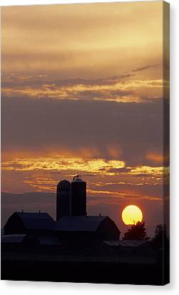 Farm At Sunset Canvas Print by Steve Somerville