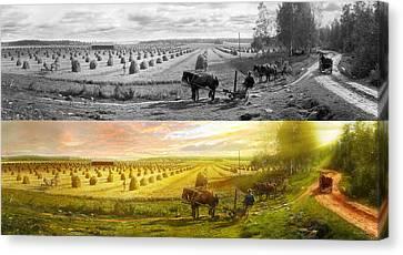 Farm - Finland - Field Of Hope 1899 - Side By Side Canvas Print