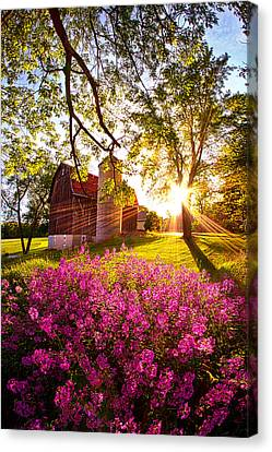 Farm Fresh Canvas Print by Phil Koch