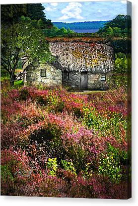 Farm In The Heather Canvas Print