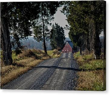 Canvas Print featuring the photograph Farm Lane by Robert Geary