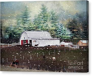 Canvas Print featuring the photograph Farm Life by Darren Fisher