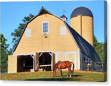 Farm Canvas Print by Mitch Cat