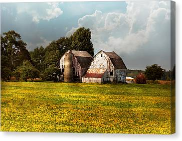 Farm - Ohio - Broken Dreams Canvas Print by Mike Savad