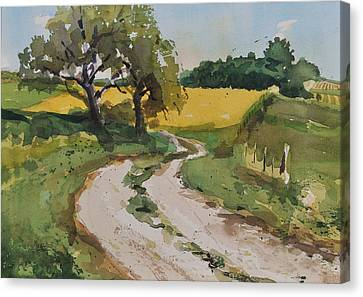 Farm Road Canvas Print by Spencer Meagher