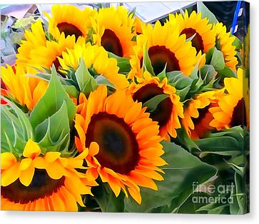 Farm Stand Sunflowers #8 Canvas Print by Ed Weidman