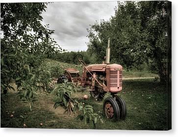 Farmall Tractor On A Farm  Canvas Print by Joann Vitali