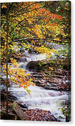 Canvas Print featuring the photograph Farmed With Golden Colors by Parker Cunningham