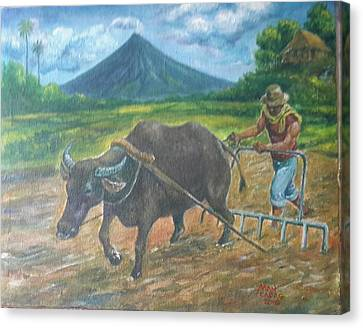 Farmer_2 Canvas Print by Manuel Cadag