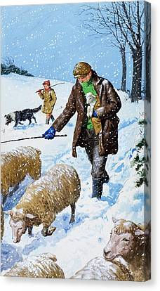 Clarence Canvas Print - Farmers Bringing In Their Sheep by Clive Uptton