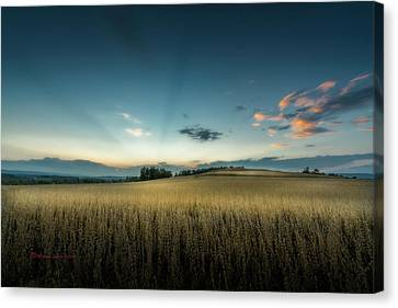Farmers Field Canvas Print by Marvin Spates
