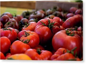 Farmer's Market Bounty Canvas Print by Lora Lee Chapman
