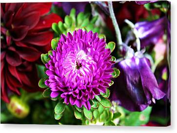 Farmers Market Bouquet Canvas Print by Cathie Tyler