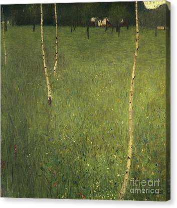 Farmhouse With Birch Trees Canvas Print