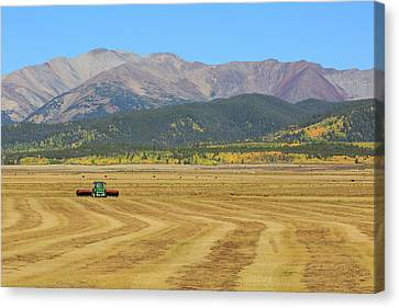 Canvas Print featuring the photograph Farming In The Highlands by David Chandler