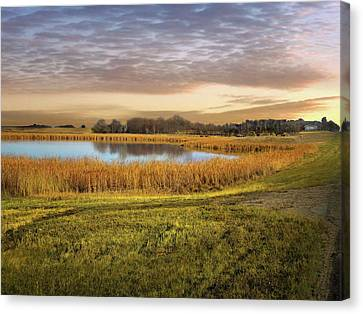 Farmland Pond Canvas Print