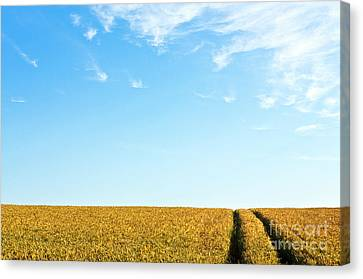 Farmland To The Horizon 1 Canvas Print by Heiko Koehrer-Wagner