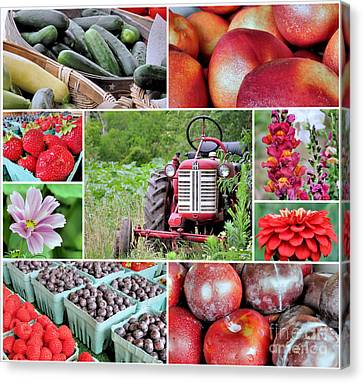 Farmstand Offterings Canvas Print by Janice Drew