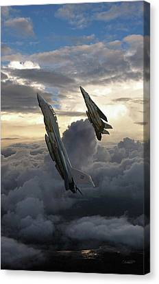 Fast Eagle Section Canvas Print by Dorian Dogaru