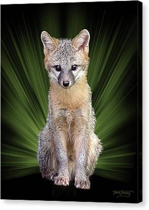 Faunagraph Canvas Print by Torie Tiffany