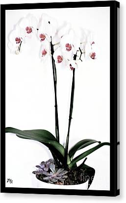 Favorite Gift Of Orchids Canvas Print by Marsha Heiken