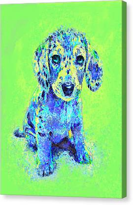 Green And Blue Dachshund Puppy Canvas Print