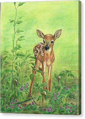 Canvas Print featuring the painting Fawn by Jeanne Kay Juhos