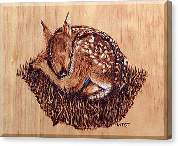 Canvas Print featuring the pyrography Fawn by Ron Haist