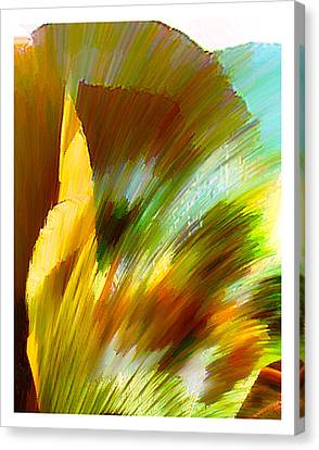 Feather Canvas Print by Anil Nene