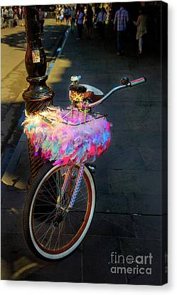 Canvas Print featuring the photograph Feather Jazz Bicycle by Craig J Satterlee
