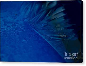 Feather Of Ice Canvas Print by Sverre Andreas Fekjan