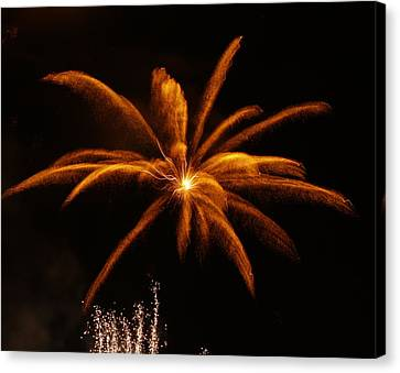 Canvas Print featuring the photograph Feather Of Light by Michael Canning