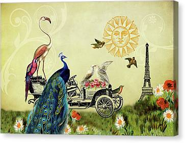 Feathered Friends In Paris, France Canvas Print by Peggy Collins