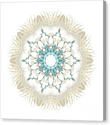 Feathers And Catkins Kaleidoscope Design Canvas Print by Mary Machare